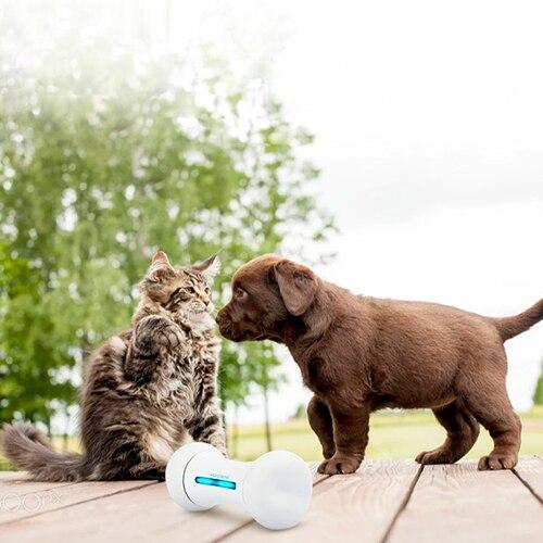 Wickedbone Smart Pet Interaction émotionnelle os jouet chien fournitures - 4
