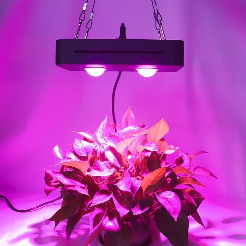 LED Grow Fill Light 1000W Full Spectrum 2COB Growth Vegetable Flower Plant growing Lamp Universal Greenhouse AC90-140V/170-300V