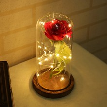 Rose Bottle String Light Beauty And The Beast Fallen Petals in a Glass Dome on Wooden Base Gift for Xmas Valentine