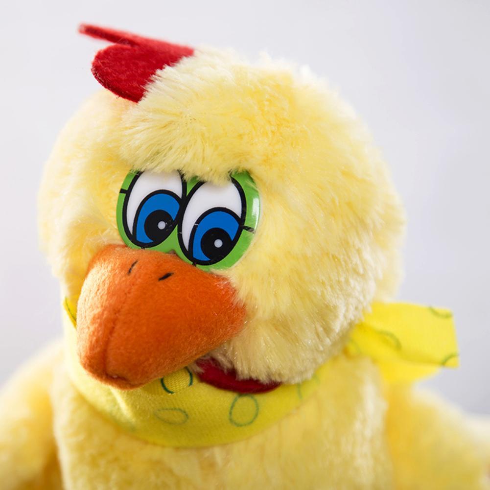 engracado que ovo de galinha galinha bonito 04