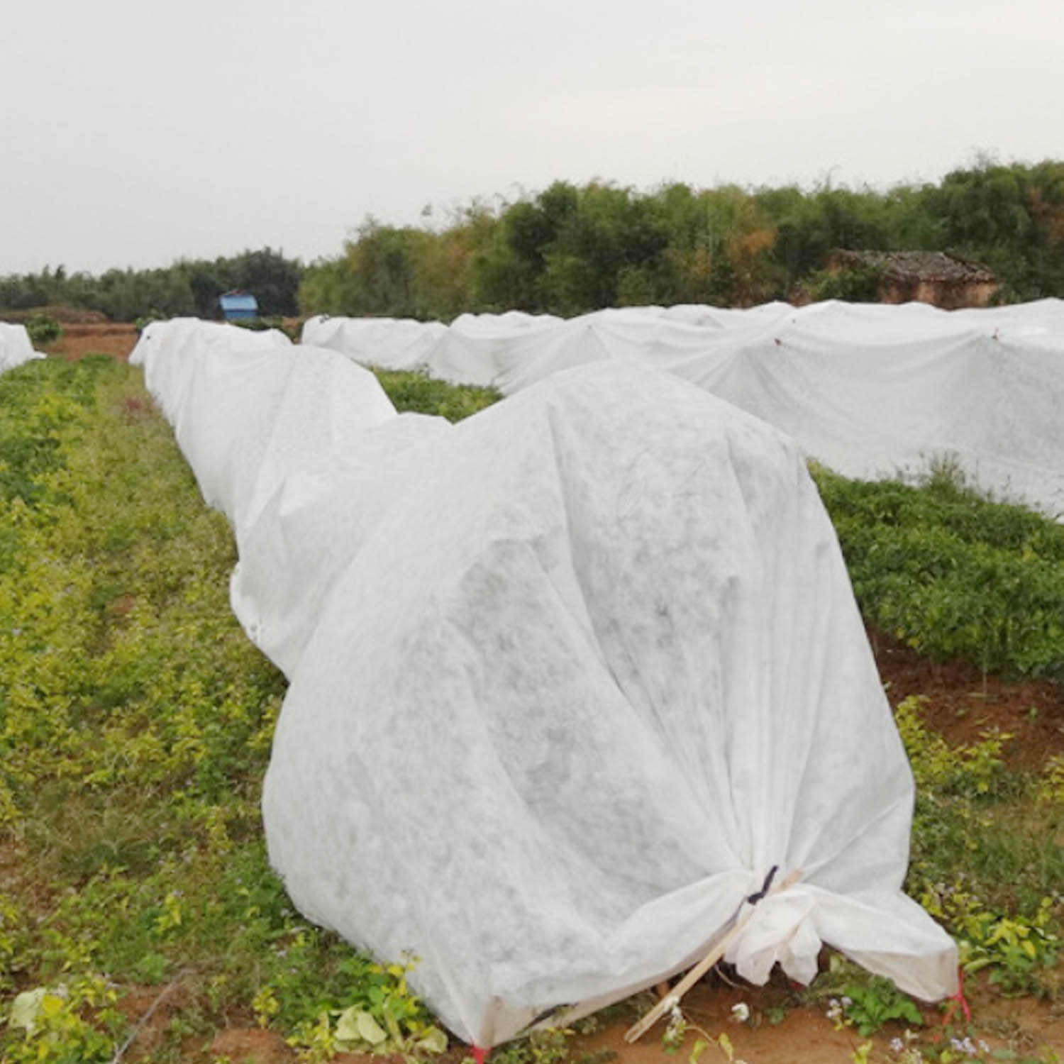 Behogar 2x5m Reusable Breathable Cold Frost Protection Plant Crop Cover Blanket For Garden Farm Courtyard Orchard