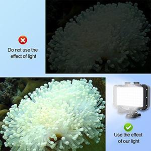 Image 2 - EastVita 84LED عالية الطاقة عكس الضوء إضاءة LED مقاومة للماء الفيديو ل Gopro كانون نيكون سوني SLR 50 mتحت الماء أضواء الغوص ضوء r25