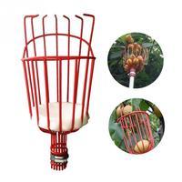 O envio gratuito de alumínio cesta profunda picker frutas conveniente horticultura picker frutas jardinagem pêssego escolher ferramentas|Ferramentas de poda| |  -