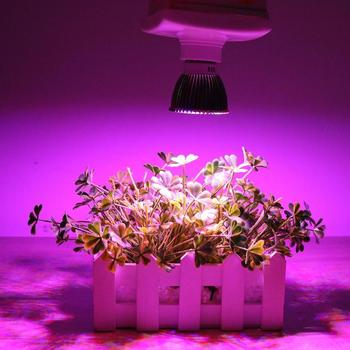 LED Grow Light Full Spectrum 8W/10W E27 E14 GU10 Led Grow Light Red Blue UV IR Lamp for Hydroponics Flowers Plants Vegetables image