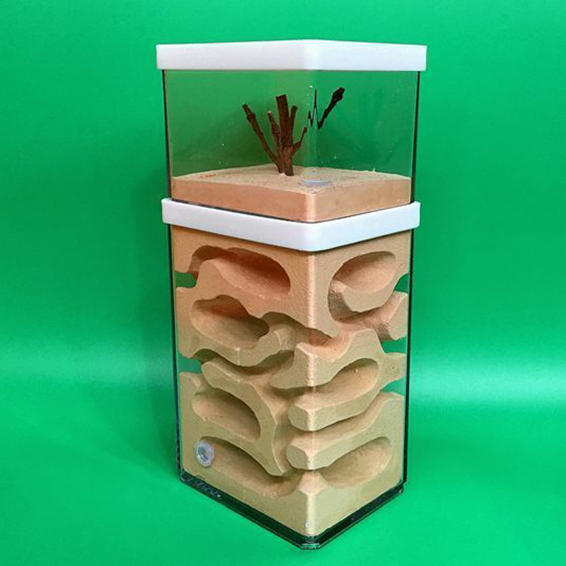 Ant Earth Nest Formicarium Housing Ant Farm House For Ant Colony Workshop игрушка anti petank 2 игрока ant 16