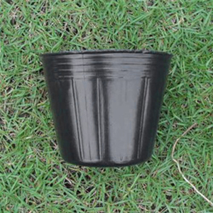 Image 5 - 100 個スモールミニテラコッタポット粘土セラミック陶器プランターサボテンの花ポット多肉植物保育園ポット黒家の庭の装飾