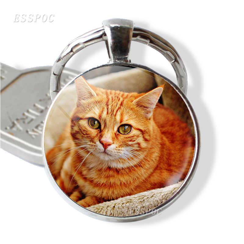 Gato colgante Animal joyería llavero coche llavero vidrio Domo cabujón gato mascota mecánico dibujos animados arte accesorios regalo