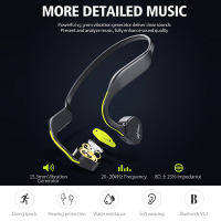 Vidonn F1 Wireless Bone Conduction HiFi Bluetooth Earphone MIC Noise Cancelling Waterproof Neckband Sport Earphones for Running