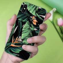 CASEIER Summer Patterned  Phone Case For iPhone XS MAX XR X Soft TPU Cases For iPhone X 5 5s SE 6 6s 7 8 Plus Funda Capinha Capa цена и фото