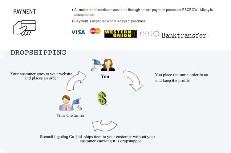1 payment and dropshipping