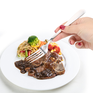 Stainless Steel Spoon Forks Sk