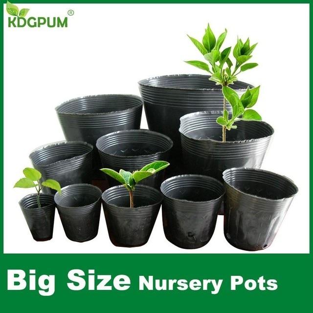 Size Nursery Pots Plant Seeds Grow