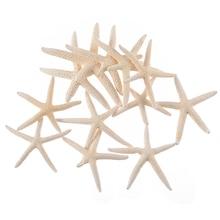 12pcs 7-11cm White Natural Finger Starfish Sea Star DIY Craft Decoration for Beach Cottage Wedding Decor