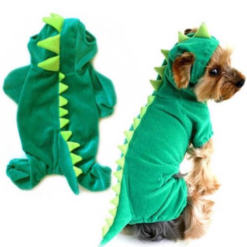 Dinosaur Costume 4