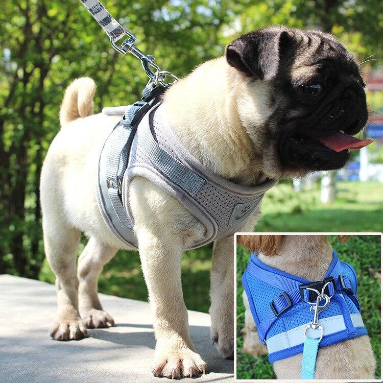 Actief Hond Harnas Voor Honden Vest Reflecterende Wandelen Lead Leash Voor Puppy Hond Ademend Mesh Borst Hond Harnas Zachte Verstelbare Harnas Superieure Prestatie