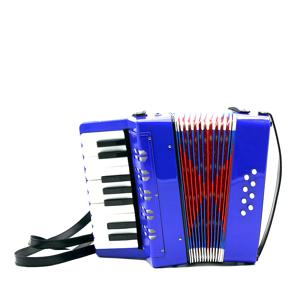 17 Key Accordion 8 Bass Mini Small Accordion Educational Musical Instrument Rhythm Band Toy for Kids Chilren-in Accordion from Sports & Entertainment    3