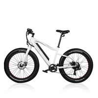 26inch Fat Ebike 36v Lithium Battery Electric Mountain Bicycle 4.0 Fat Tires Snow Beach Off Road Electric Bicycle