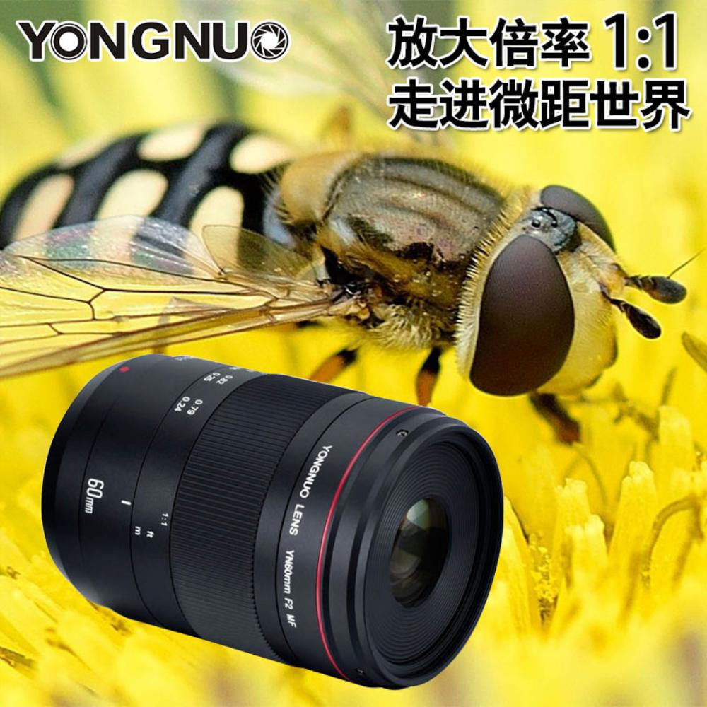 YONGNUO YN60mm F2/MF Standard Moyen Objectif pour Canon, YN60mm Premier Objectif Mise Au Point Fixe pour Canon EOS Caméra 80D 70D