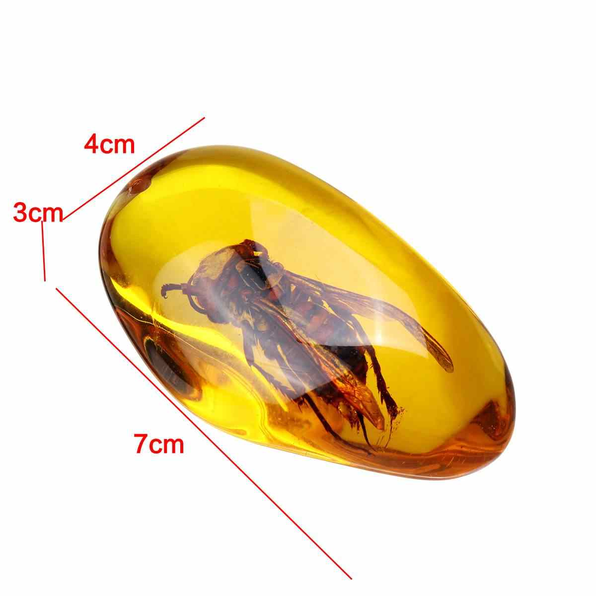 Moda naturalne osy owadów kamień bursztynowy wisiorek naszyjnik sweter dekoracje dla DIY biżuteria wisiorek rzemiosło wystrój domu