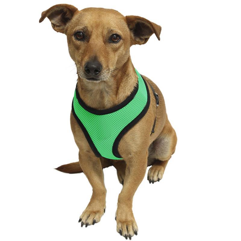 Doelstelling 1 Pc Puppy Kat Kraag Huisdier Vest Borst Riem Riem Nieuwe Verstelbare Hond Lijn Met Ademend Nylon Mesh Vest Comfortabel Harnas Hond