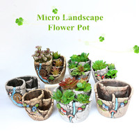 2019 Hot Sale Mini Succulent Planter Flower Plant Bonsai Pot Micro Landscape Garden Decoration