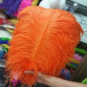 Image 2 - Groothandel! Hot Koop 100 stks Struisvogelveren 14 Kleur 50 55 cm/20 22 inches pluim bruiloft uitvoeren art decoratie veer