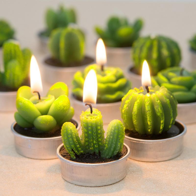 Candles Humble 12pcs/set Home Decor Cactus Candle Table Tea Light Garden Mini Wax Green Candles For Wedding Birthday Decoration