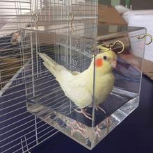 AsyPets прозрачный дом для ванной с подвесными крючками для попугаев, попугаев