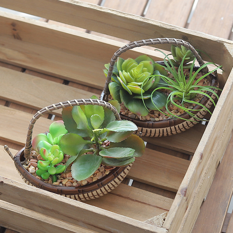 Garden Rattan Simulation Plant Decorations Plants Indoor Desktop Pot Fake Grass More Meat Bonsai Ceramic Small Ornaments in Artificial Plants from Home Garden