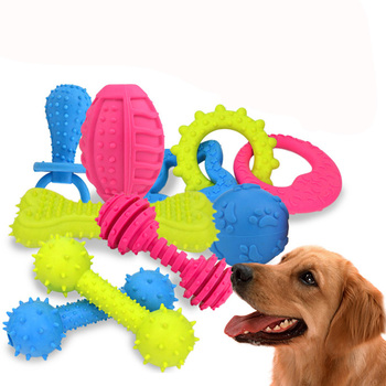 Pet Chew Toy Set 10