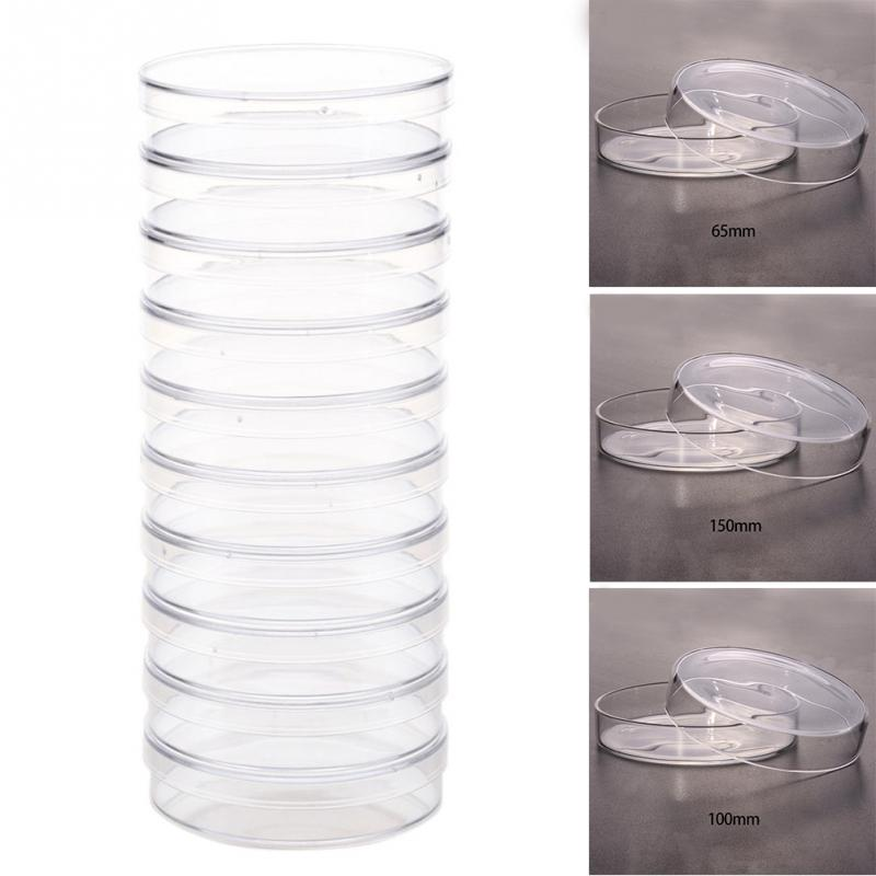 10Pcs/Set 60mm Polystyrene Petri Dishes Affordable For Cell Clear Sterile Chemical Instrument Drop Shipping