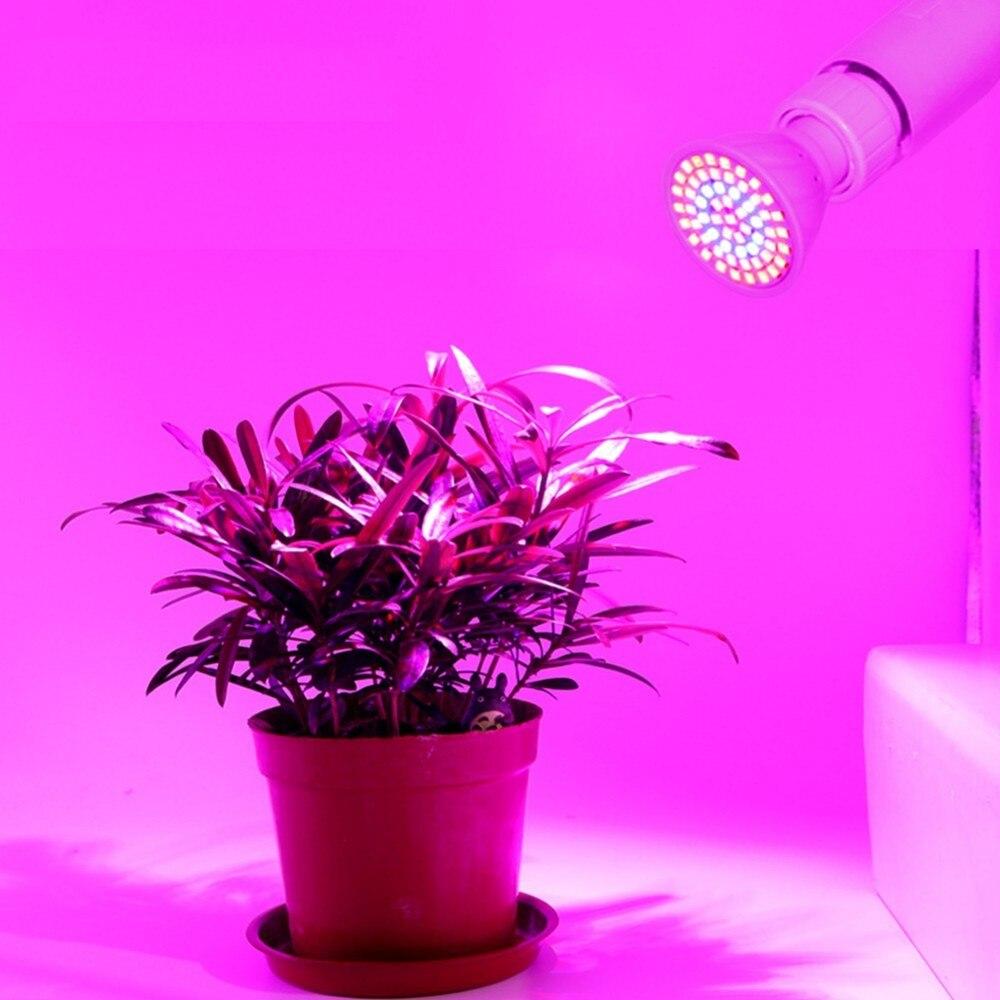 E27 110V 220V Full Spectrum Indoor Plant Lamp 2835 LED Lampada Grow Light For Plants Vegs Hydroponic System Vegetables Flower