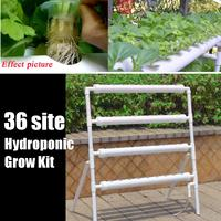 36 Hydroponic System Indoor Garden Grow Kit Plant Nursery Pot Vegetable Water Planting Soilless Seedling Planter Flower Stand