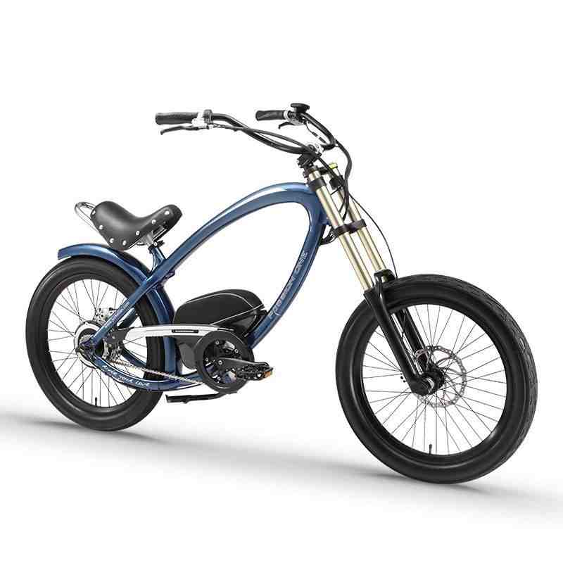 Daibot Electric Bike 36V Two Wheels Electric Scooters 24 Inch 250W Beach Snow Bike Range 80KM Smart Electric Bicycle