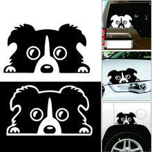 Professionnel 1pc nouveau 14*8CM frontière Collie chien personnalité réfléchissant verre arrière autocollant de voiture pour animaux de compagnie noir blanc