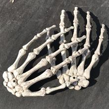 Человеческая анатомическая кость медицинская модель скелета медицинская помощь для обучения Анатомия Искусство Эскиз 1 пара Череп Кость руки скелета Хэллоуин