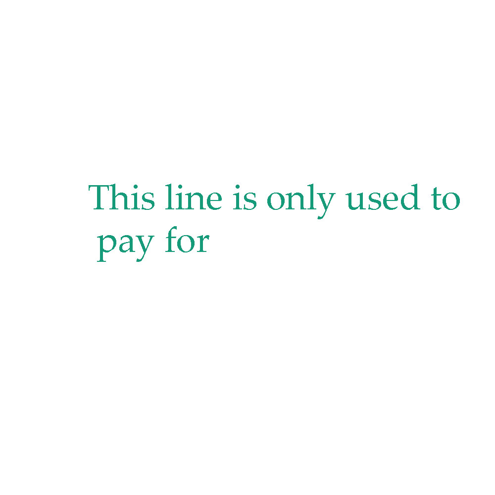 This link is only used to pay money