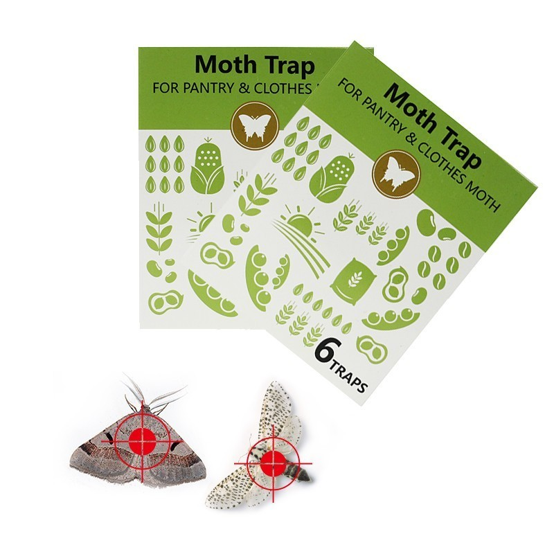 12pcs/lot Cloth/Pantry Moth Trap Pheromone Killer Paste Mole Repeller Pest Reject Fly Trap Insects Family Factory Restaurant Use