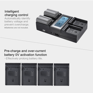 Image 3 - Andoer Digital Camera Battery Charger 4 Channels for Canon EOS 5DII 5DS 6D 7DII 80D with DC Car Charger LCD Display EU US Plug