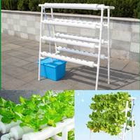 72 Holes Hydroponic System Indoor Garden Plant Grow Kit Nursery Pot Vegetable Water Planting Soilless Seedling Flower Stand 220V