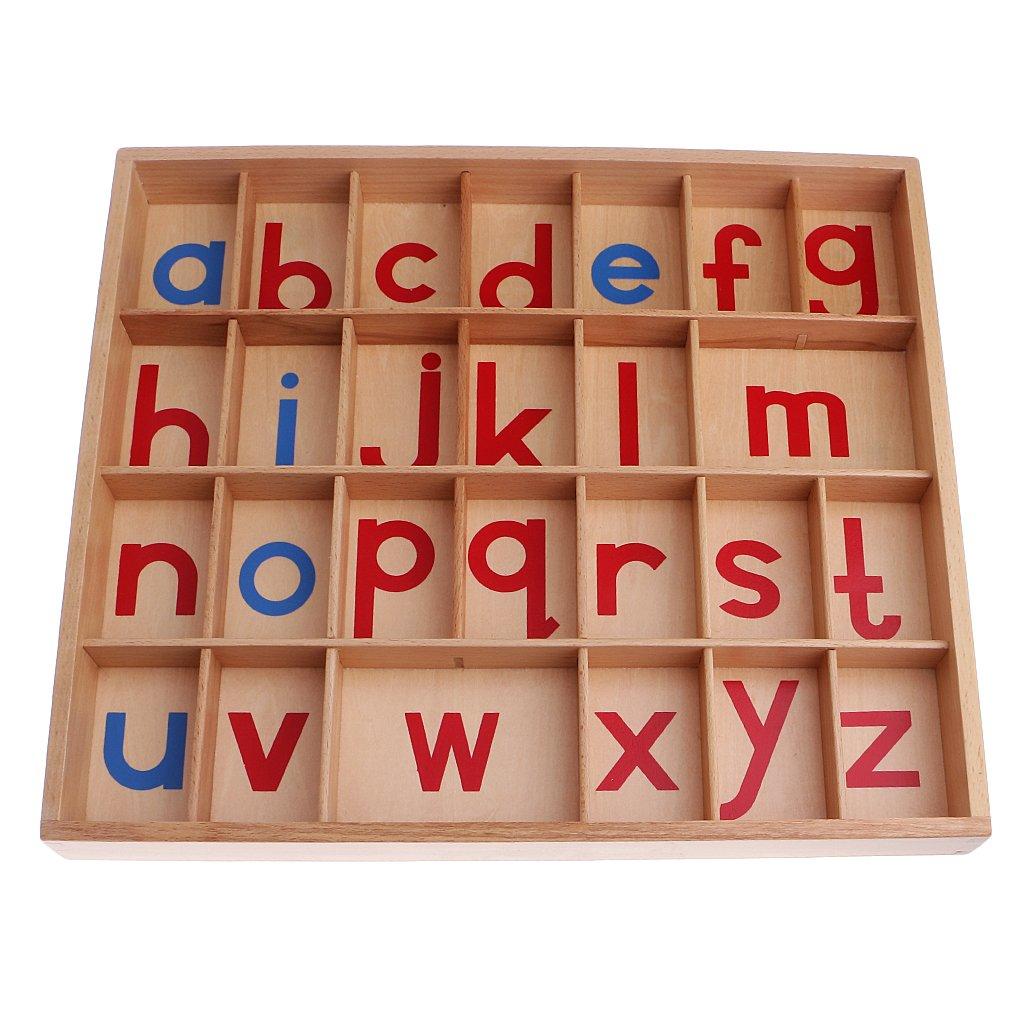 Montessori Alphabet jouet éducatif éducation préscolaire lettre matériel d'apprentissage pour les enfants