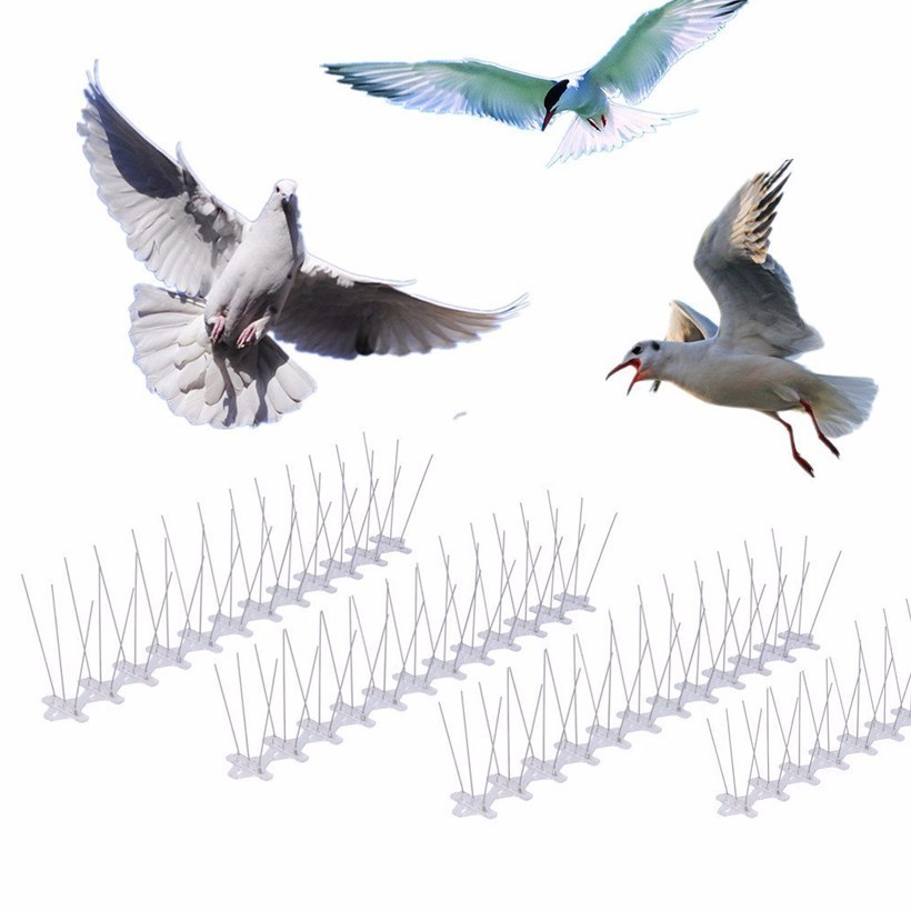 Venda quente 0.5 m-9 m pássaro pigeon repeller aço inoxidável pigeon nails anti-pássaro anti-pomba spikes controle de pragas pomar pássaro