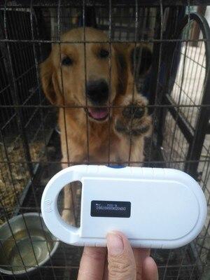 Batteria ricaricabile di potere del USB FDX B ID64 Pet ID tag orecchio piccolo mini RFID microchip reader per cane gatto animali domestici animale chip di scanner