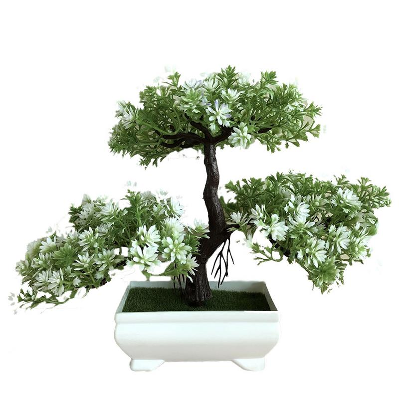 US $0 32 Hot Sale!Lowest Price!50 juniper bonsai tree potted flowers