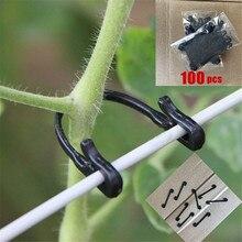 100 шт крепление для виноградной лозы, привязанный крюк с пряжкой, растительные прививки, сельскохозяйственная теплица