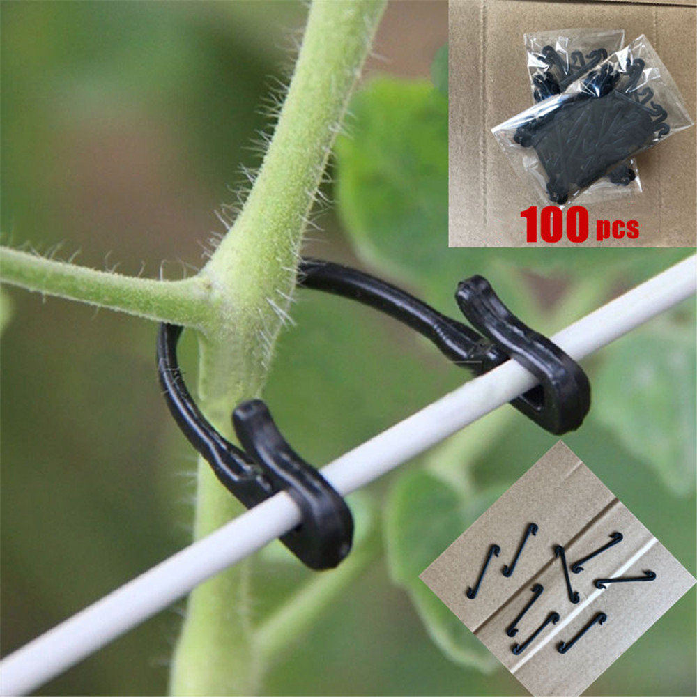 100PCS Vines Fastener Tied Buckle Hook Plant Vegetable Grafting Clips Agricultural Greenhouse Supplies