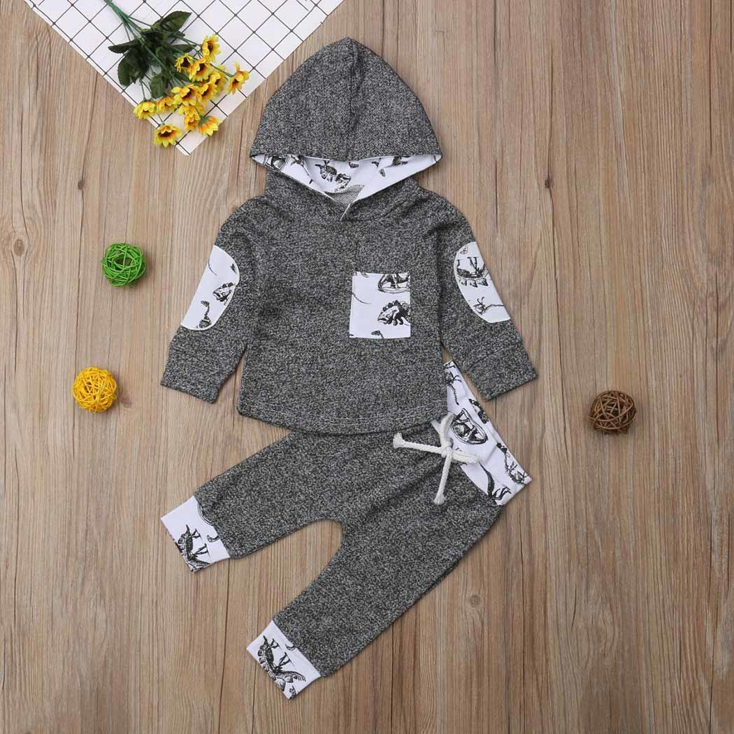 Faithful Baby Girls Boys Cute Cartoon Hooded Tops And Long Pants Patchwork All Seasons Outfits Everyday, Holiday Set