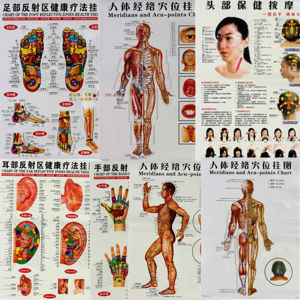 7Pcs/Set English Hand&Foot&Ear&Body Meridian Points Of Human Wall Chart Female /Male Acupuncture Massage Point Map Flipchart7Pcs/Set English Hand&Foot&Ear&Body Meridian Points Of Human Wall Chart Female /Male Acupuncture Massage Point Map Flipchart