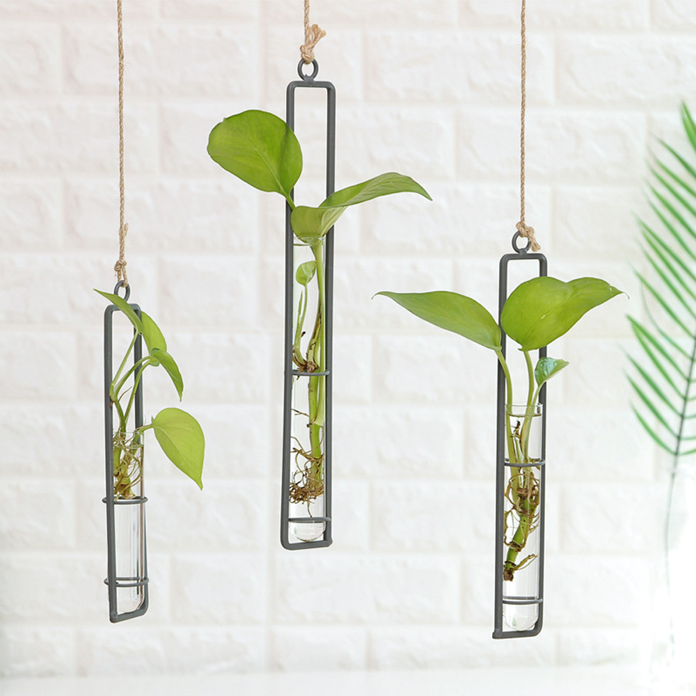 Iron Wall Hanging Flower Pots Mini Flowerpot Garden Glass Hydroponics Transparent Hanging Flower Bottle Home Room Decor