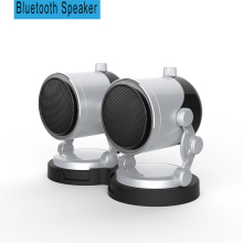 Dual Bass Speakers For
